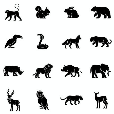 Vers un Internet des animaux