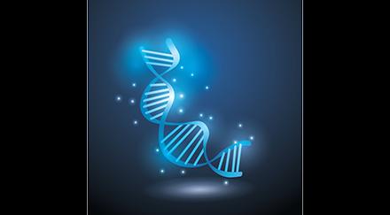 « L'ADN fossile, une machine à remonter le temps »