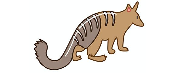 Le tigre de Tasmanie et autres animaux extraordinaires