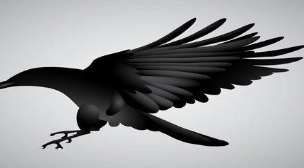Attaque aviaire sur Rome