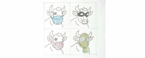 Masques à vaches